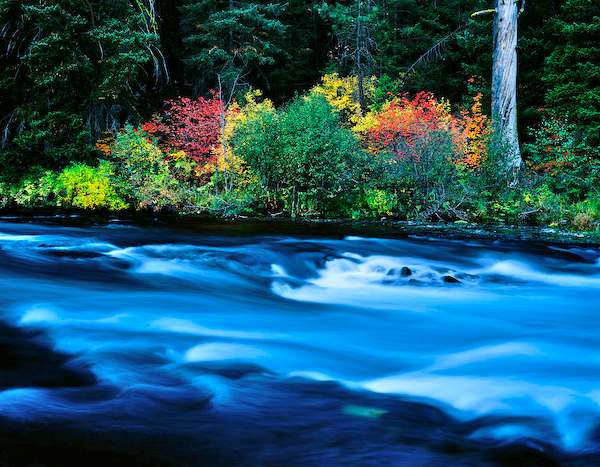 Metolius river in autumn