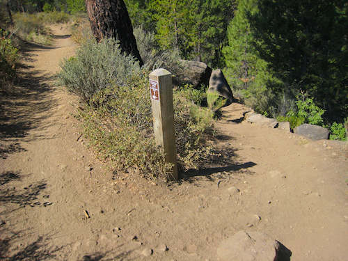 """Fork in the trail. Stay left for the longer """"Shevlin park loop"""" and turn down hill to the right for the shorter """"Tumalo Creek Trail"""""""