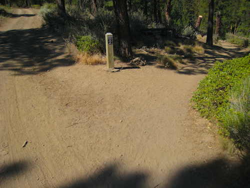 At this fork in the trail, follow the park sign to the upper foot bridge and enjoy some some excellent trail running through sylvan surroundings.