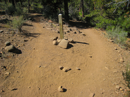 Fork in the Shevlin Park Loop Trail. Stay to the right!