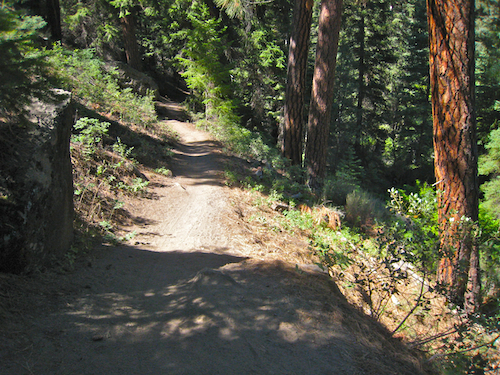 Yet another scenic section of trail along the Shevlin Park Loop Trail.