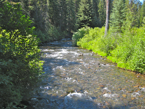 View of Tumalo Creek Looking upstream from the footbridge at the southern end of the Shevlin Park Loop Trail