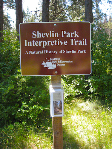 Beginning of the Shevlin Park interpretive trail