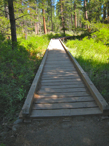 Boardwalk over wetlands in Shevlin Park