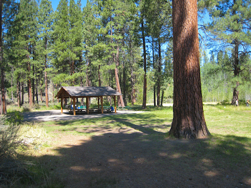 Picnic meadow near the entrance to Shevlin Park