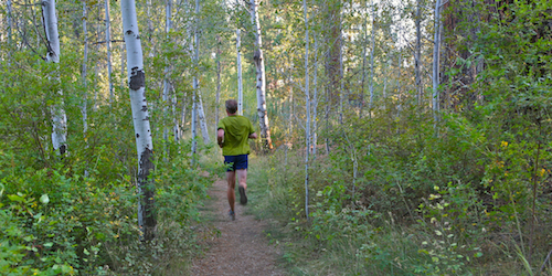 "Trail runner passes through an aspen grove at the beginning of the ""Shevlin Park Trail Loop"" in Central Oregon's Shevlin Park"