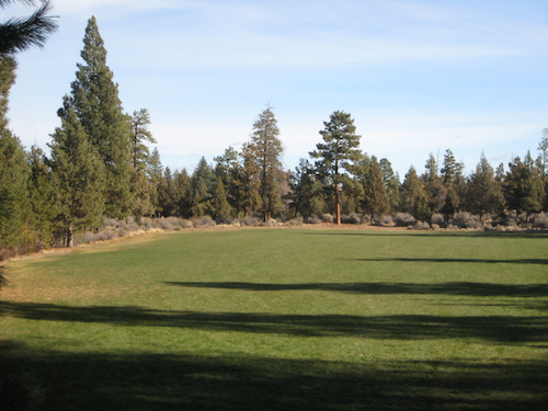 Grassy field in Sawyer Park along the Deschutes River Trail