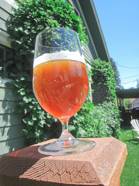 Mother Lode NW Pale Ale from Deschutes Brewery in Bend, Oregon