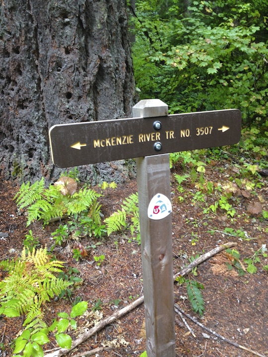 Trail Sign for McKenzie River Trail