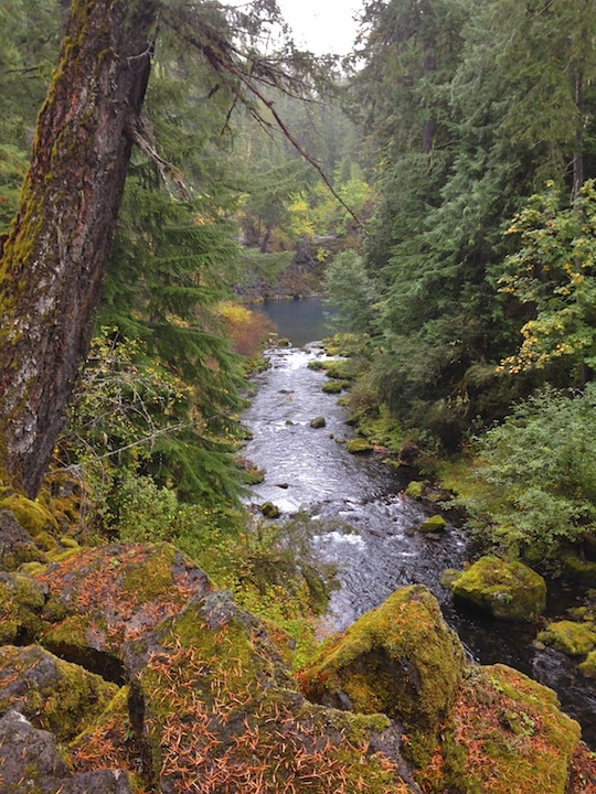 First view of the Tamolitch Pool and the out-flowing McKenzie River