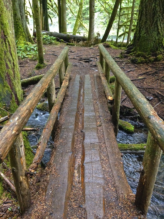 Footbridge over tributary stream
